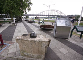 The 2012 Bridges to Arnhem Project