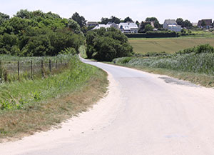 Todays road from Gold Beach.
