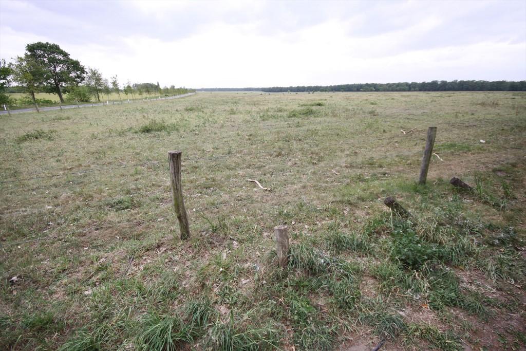 The 1st British Airborne Division landing zones near Heelsum west of Arnhem today.