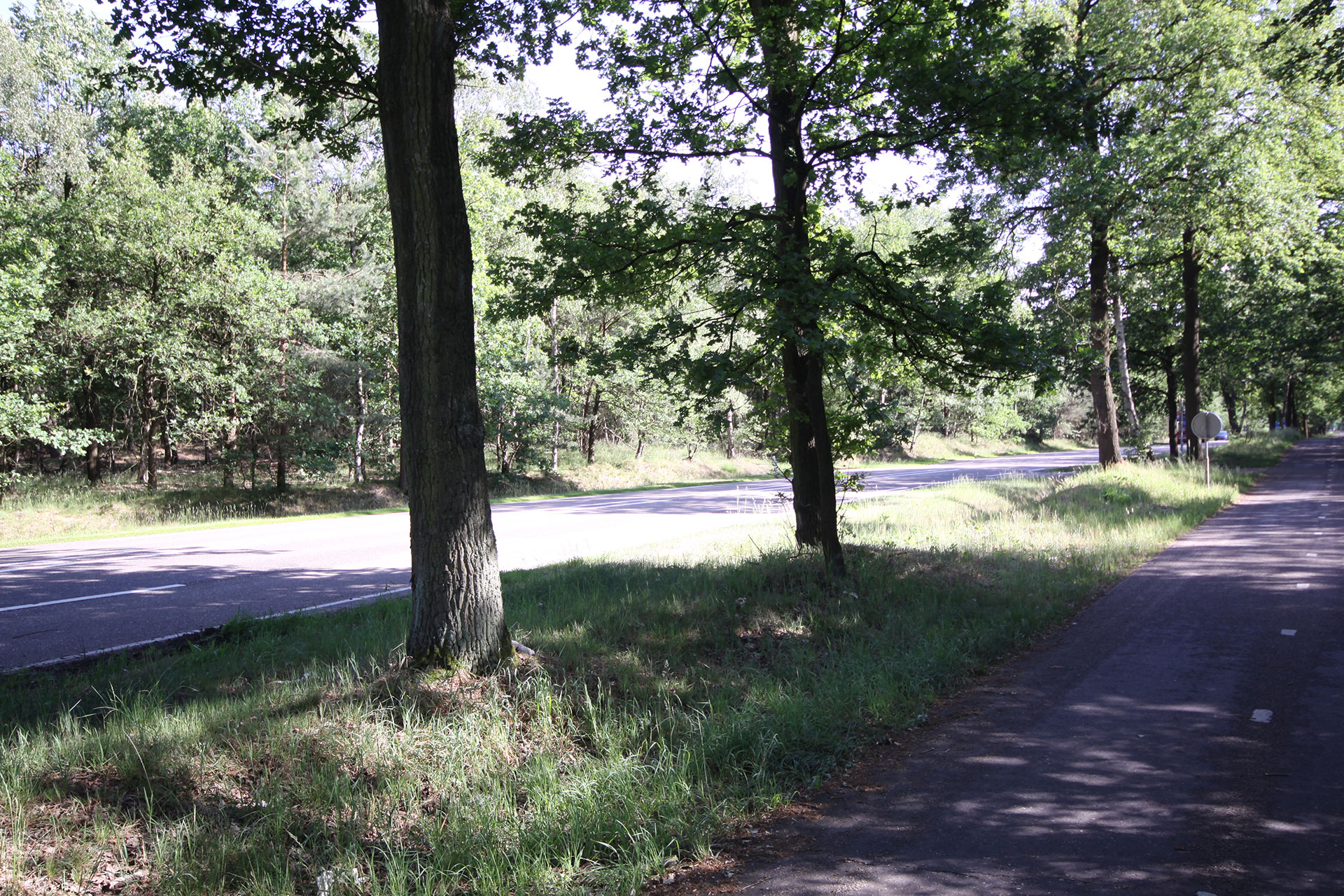Valkensvaard road today